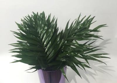 Hojas arreglos florales