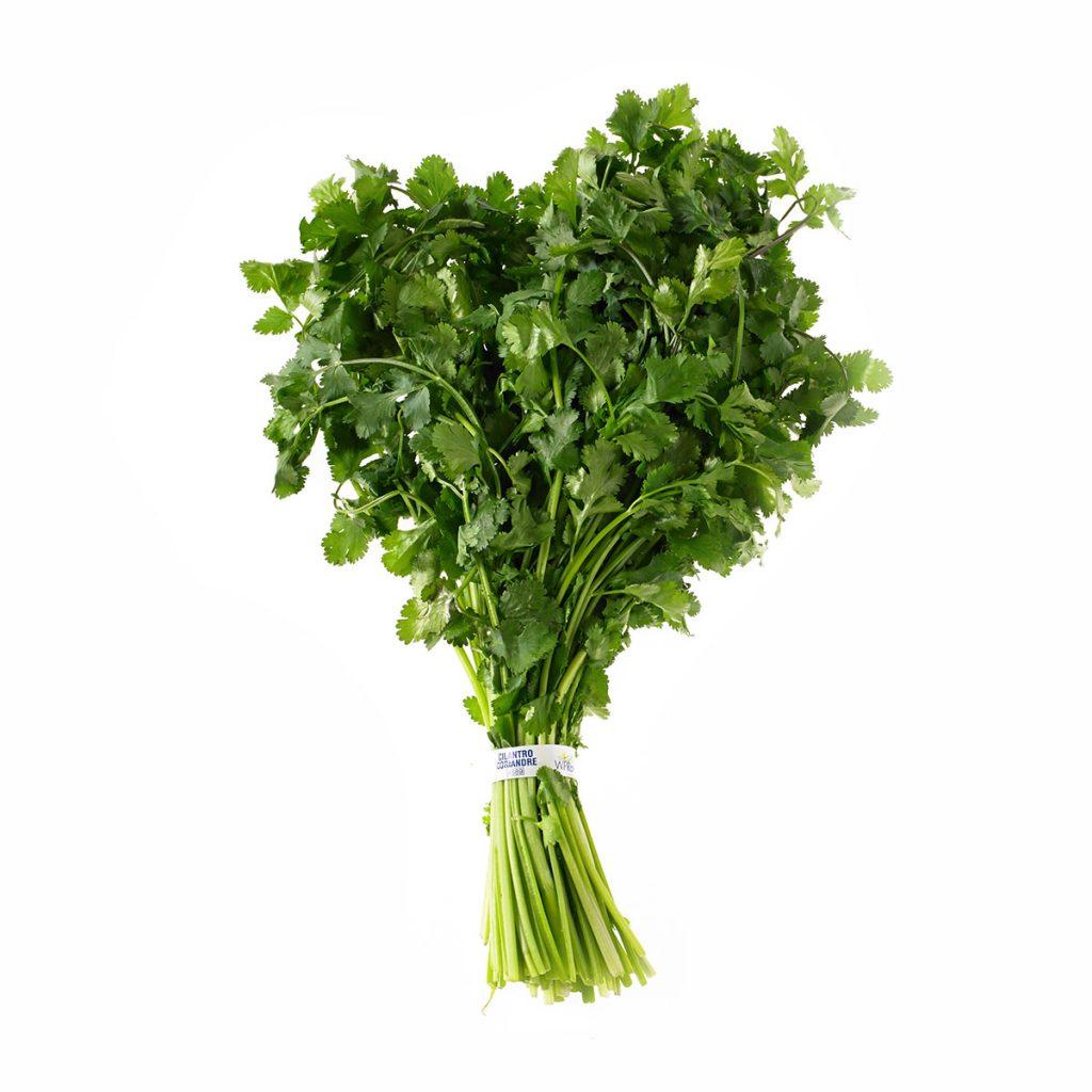 5 hierbas arom ticas muy sencillas para plantar en casa flor y fauna - Cultivar plantas aromaticas en casa ...