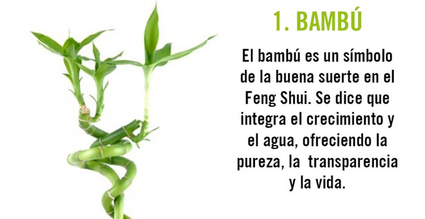Feng shui el bho para la buena suerte 10 plantas que act for Feng shui para la buena suerte