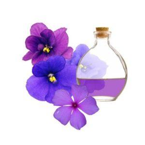flores-elaboración-perfumes-la-violeta