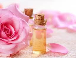 flores-elaboración-perfumes-la-rosa