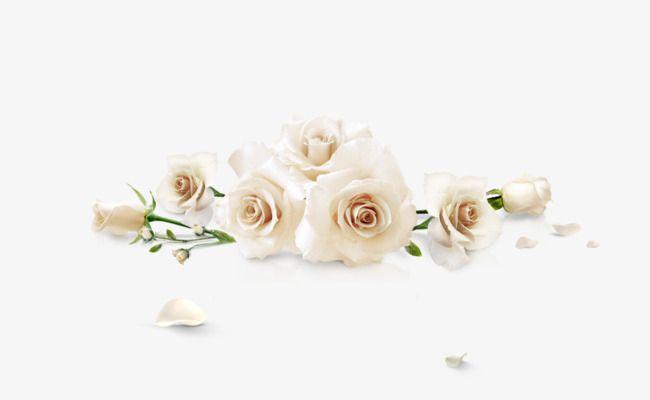 rosas blancas-flores-originales